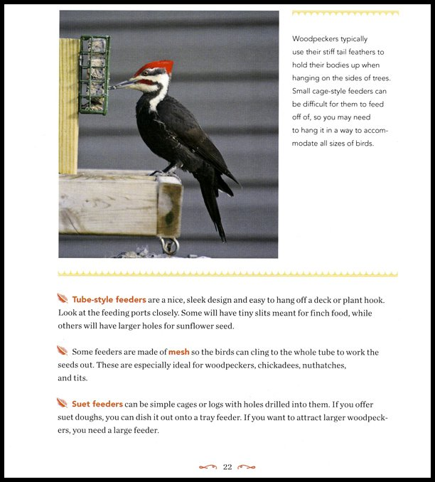 1001secrets.woodpecker.600