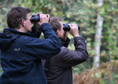hendrik and jochen, birders for hire