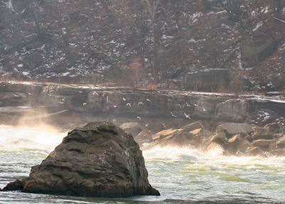 Niagara Gorge, just above the whirlpool