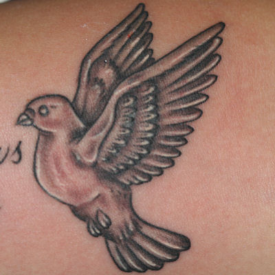 finished dove tattoo. And