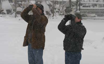 Charlie and Mike look at Rusty Blackbirds