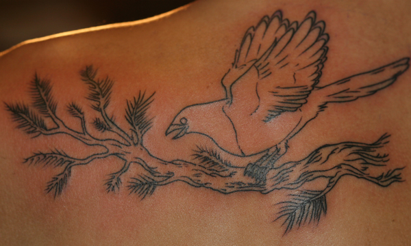 I just got my first tattoo from Pat Fish last weekend - based on Jen's Tree