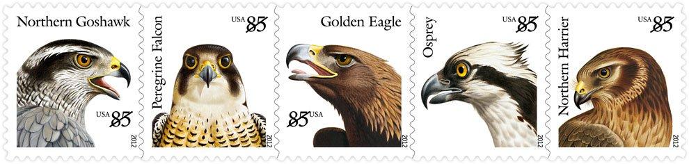 Birds Of Prey Stamps 10 000 Birds
