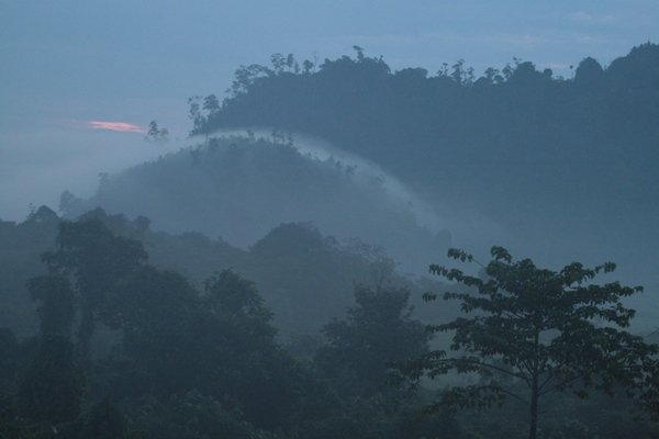 morning in south kalimantan