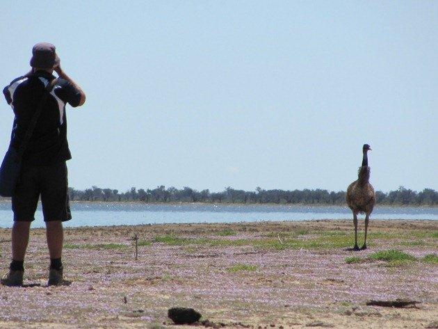 Grant & Emu