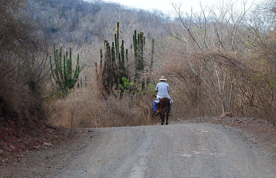 Camino La Noria
