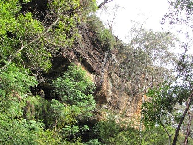 Centennial Glen Reserve (2)