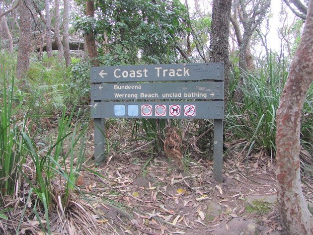 Coast track NSW