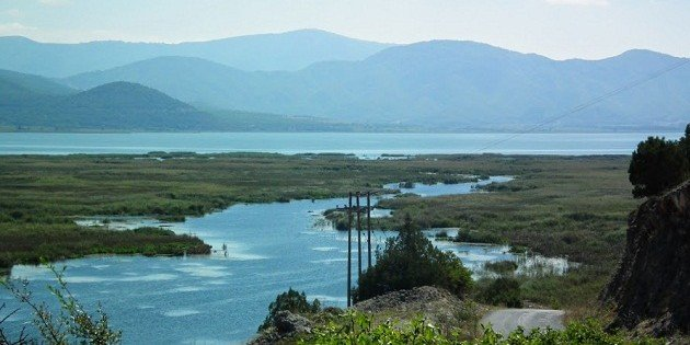 Prespa Lakes National Park, Greece: the largest Dalmatian Pelican colony in the world