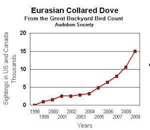 Eurasian Collared-Dove Expansion 1998 to 2009
