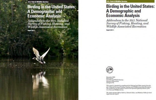 FWS 2011 Birding