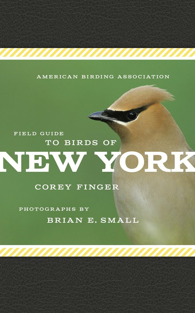 Field Guide to the Birds of New York