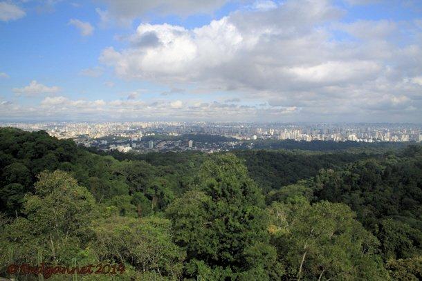 GRU 11May14 Sao Paulo 02