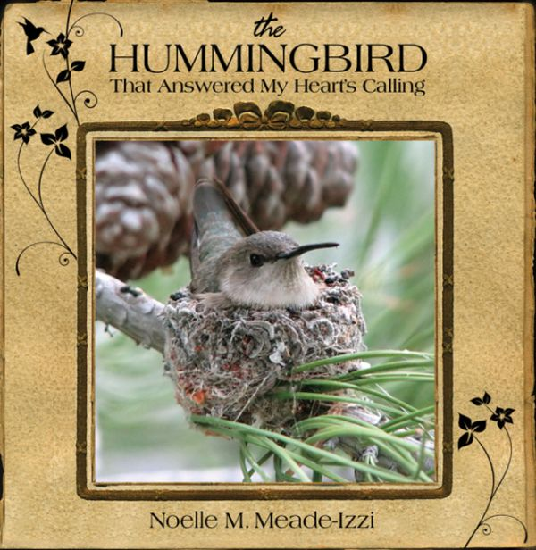 The Hummingbird that Answered My Heart's Calling -- book cover