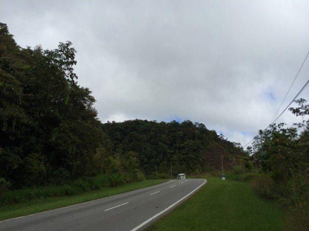 Road Birding
