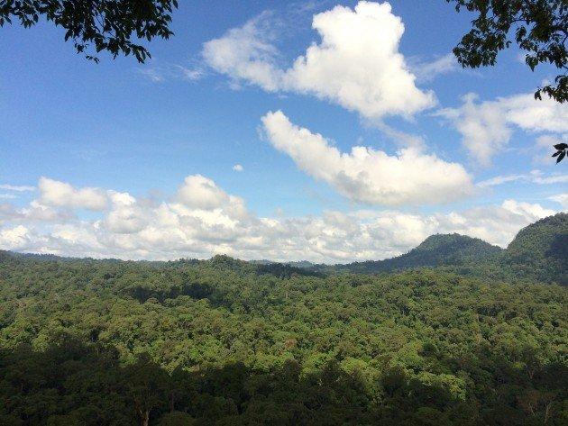 great view danum