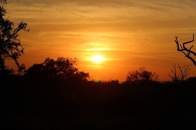 Sunset Madikwe