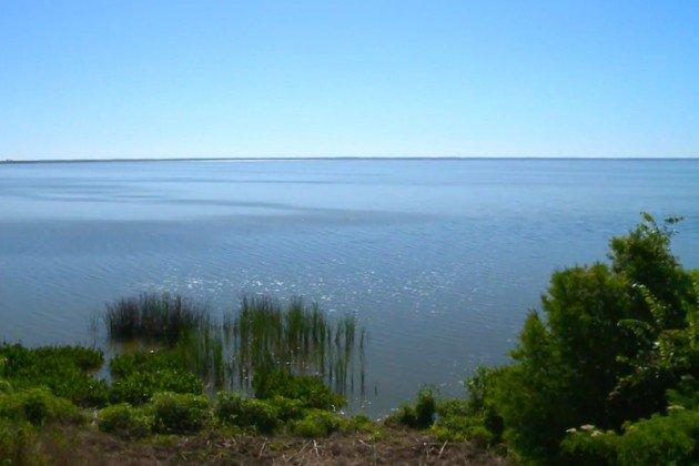 Lake_Apopka