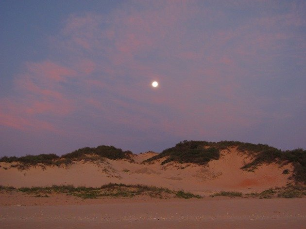 Moon rise Cable Beach