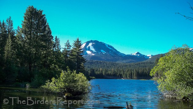 Mount Lassen From Manzanita Lake