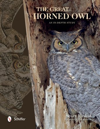 Cover of The Great Horned Owl: An In-Depth Study