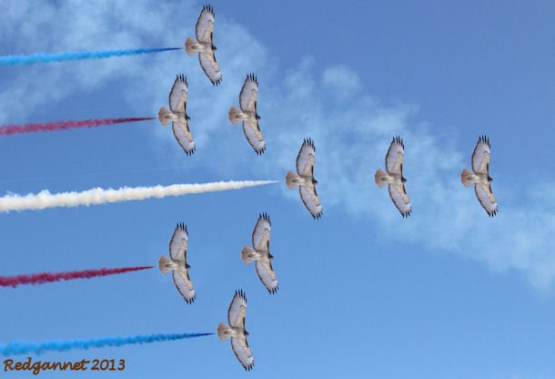 Red Arrows 01.
