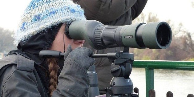 Spotting scope review: Swarovski 25-60×65 STX