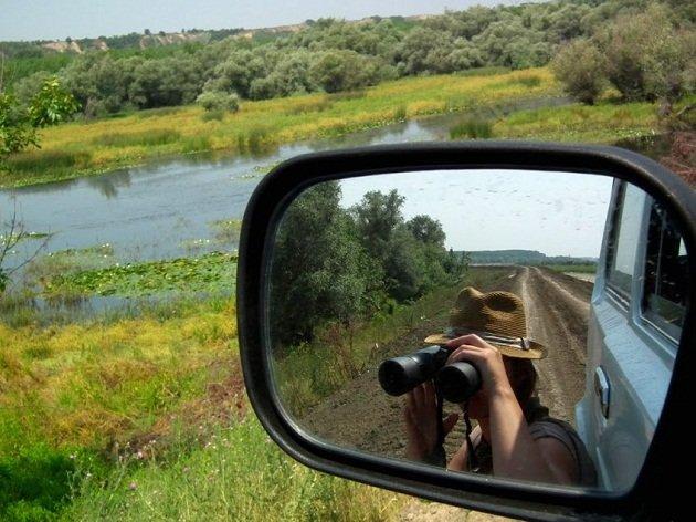 Simic birding Serbia (3)