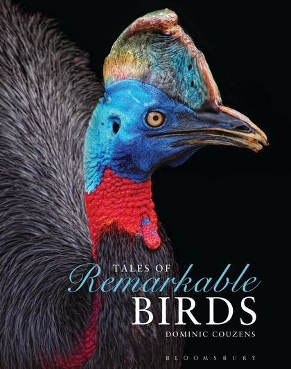 Tales of Remarkable Birds cover image, with Southern Cassowary on black background