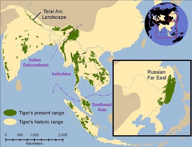 Tiger_map_630