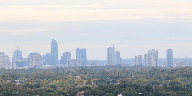 The Urban Birds of Austin, Texas