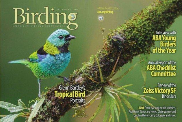 birding magazine