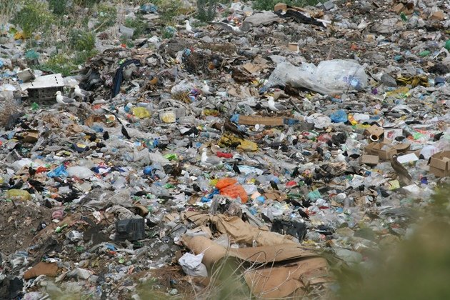 bukhtarma dump