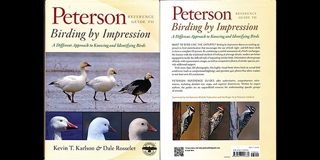 Birding By Impression: A Book Review