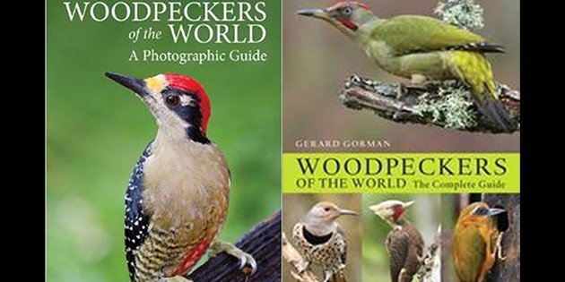 Woodpeckers of the World: A Photographic Guide–A Review