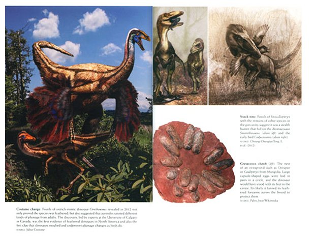 flying dinosaurs images