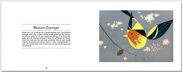 harper.westerntanger.b.630