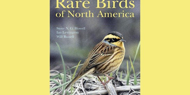 Rare Birds of North America: A Book Review