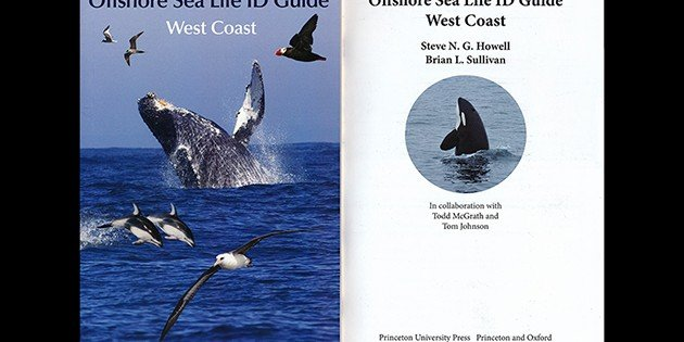 Offshore Sea Life ID Guide: West Coast–A Book Review