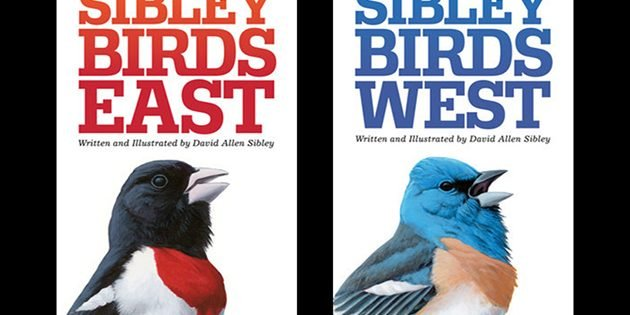 Sibley Birds East & Sibley Birds West: A Review