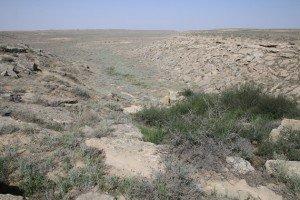 tolai landscape