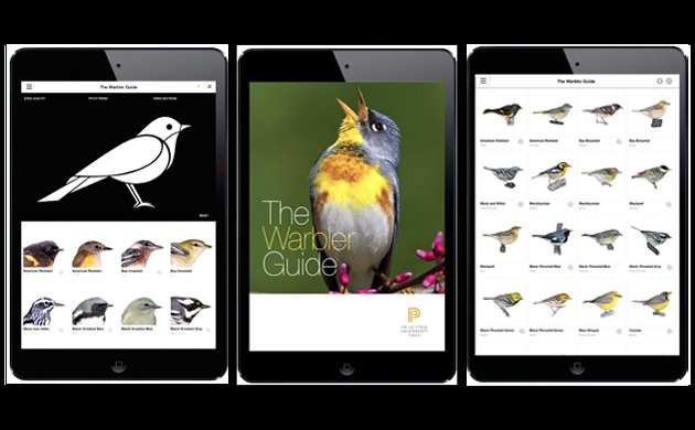 The Warbler Guide App: A Review by an App-loving Birder